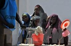 LHQ cảnh báo về khủng hoảng nhân đạo do hạn hán ở Somalia