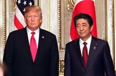Thủ tướng Nhật Bản Abe và Tổng thống Mỹ Trump hội đàm song phương