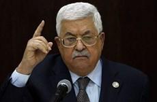 Palestine tiếp tục chỉ trích Kế hoạch hòa bình Trung Đông của Mỹ