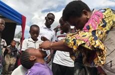 CHDC Congo triển khai chiến dịch phòng chống dịch tả