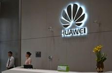 Huawei yêu cầu nhân viên quốc tịch Mỹ rời khỏi trụ sở công ty