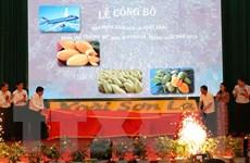 Công bố sản phẩm xoài Sơn La xuất khẩu sang thị trường các nước