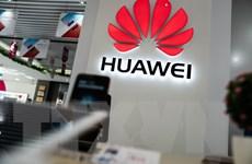 Huawei đang xem xét lại mục tiêu giành ngôi số 1 từ Samsung