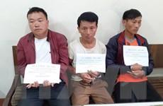 Sơn La: Bắt đối tượng vận chuyển trái phép 20 bánh heroin