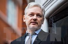 Tòa án Thụy Điển bác đề nghị bắt giữ nhà sáng lập WikiLeaks Assange