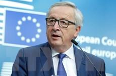 Chủ tịch EC đề nghị giảm số lượng ủy viên châu Âu vì thiếu việc