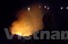 Đà Nẵng: Dập tắt vụ cháy rừng trên bán đảo Sơn Trà