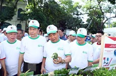 Thủ tướng giao Bộ TN-MT nghiên cứu thông tin do VietnamPlus phản ánh