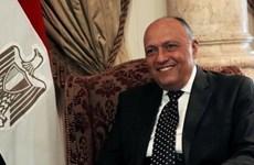 Ai Cập và Nga chia sẻ lập trường về vấn đề Palestine
