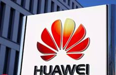 Huawei cho bộ phận nghiên cứu ở Mỹ hoạt động độc lập để tránh cấm vận?