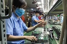 [Mega Story] Doanh nghiệp Việt Nam và làn sóng FTA