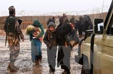UNHCR: 1,4 triệu người tị nạn cần tái định cư khẩn cấp trong năm 2020