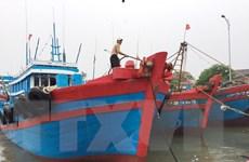 Các địa phương tích cực kêu gọi tàu thuyền vào tránh trú bão số 2
