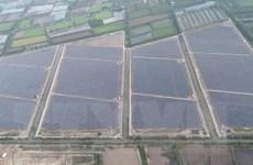 An Giang đưa vào hoạt động nhà máy điện Mặt Trời trị giá 3.000 tỷ đồng