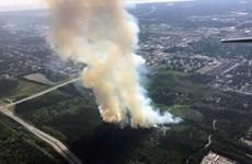 Mỹ sơ tán một cộng đồng dân cư ở bang lạnh giá Alaska do cháy rừng