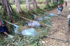 Papua New Guinea: Thảm sát tại một bộ lạc vùng Cao nguyên