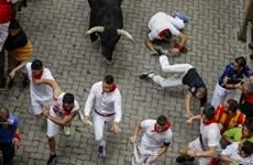 Thót tim xem cảnh rượt đuổi ở lễ hội chạy đua với bò tót San Fermin