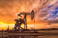 Giá dầu thế giới tăng nhẹ do căng thẳng ở Trung Đông