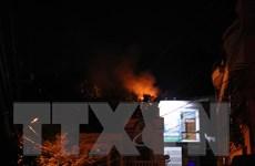 Dập tắt đám cháy trên núi Bà Hỏa giữa lòng thành phố Quy Nhơn