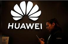 Bất chấp bị giám sát chặt chẽ, Huawei vẫn đầu tư 3,1 tỷ USD vào Italy