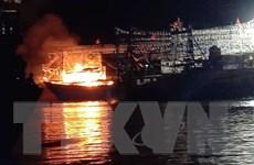 Nghệ An: Tàu cá của ngư dân cháy trụi tại cảng Lạch Quèn