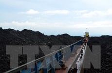 Cảnh sát biển tạm giữ 2000 tấn bã xít không rõ nguồn gốc