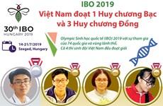 [Infographics] Cả 4 thí sinh Việt Nam đều đoạt giải tại IBO 2019