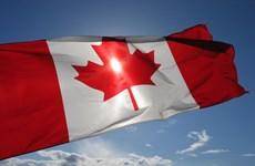 Nhiều doanh nghiệp ở Canada chưa bao giờ biết tới các thỏa thuận FTA