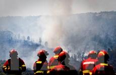 Bồ Đào Nha: Phát hiện nhiều thiết bị nổ gần khu vực cháy rừng