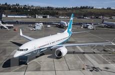 CEO Boeing cảnh báo có thể 'tạm ngừng sản xuất' mẫu máy bay 737 MAX