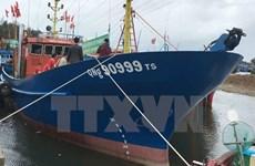 Bất cập khi triển khai Nghị định 67: Nhiều con tàu nằm bờ