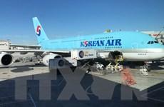 Hãng hàng không hàng đầu Hàn Quốc đình chỉ một chặng bay tới Nhật Bản