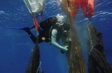 Đáng sợ với 'vịnh san hô rác thải nhựa' dưới biển Aegean ở Hy Lạp
