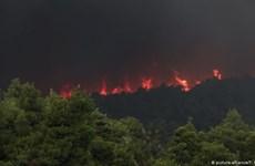 Hy Lạp ban bố tình trạng khẩn cấp do cháy rừng tại đảo Evia