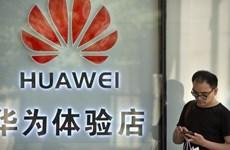 """Hệ điều hành Harmony là một """"kế hoạch B"""" đầy rủi ro của Huawei?"""