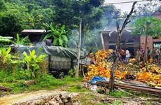 Tai nạn giao thông nghiêm trọng tại Thanh Hóa, hai người tử vong
