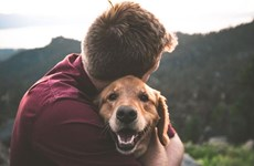 Coi thú nuôi là thành viên gia đình, người Mỹ 'mạnh chi' cho thú cưng