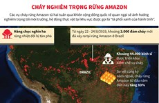 Cháy rừng Amazon ngày càng diễn ra nghiêm trọng và lan rộng hơn