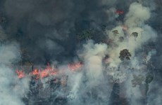 Brazil gồng mình cứu 'lá phổi xanh của hành tinh' rừng Amazon