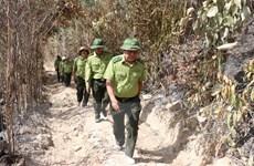 Cục Kiểm lâm kiểm tra công tác phòng chống cháy rừng tại Phú Yên