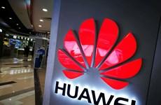 Điện thoại Huawei Mate 30 sẽ ra mắt mà không có ứng dụng Google