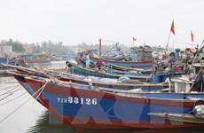 Áp thấp nhiệt đới đang cách đất liền Quảng Trị, Quảng Ngãi 100km