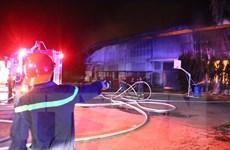 Bình Dương: Nỗ lực dập lửa công ty đệm cháy trong đêm