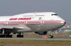 Hãng hàng không Air India cung cấp bữa giảm chất béo cho các nhân viên