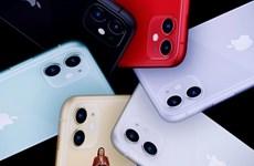 iPhone 11 được đặt mua trước nhiều nhất ở thị trường Trung Quốc