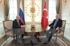 Quan hệ Nga-Thổ Nhĩ Kỳ phát triển năng động trên mọi lĩnh vực