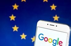 EU: Google không phải thực thi quyền được lãng quên trên toàn cầu