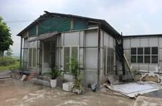 UBND thành phố Hà Nội chỉ đạo làm rõ vi phạm đất đai ở Long Biên
