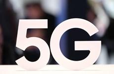EU phát hành cảnh cáo về những rủi ro với an ninh mạng 5G