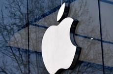 Apple âm thầm xây dựng hãng phim riêng trong cuộc đua với Netflix